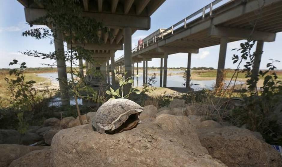 Ray Hubbard Bridge Drought