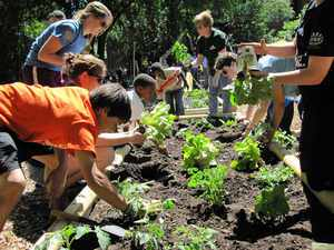 Community Garden Grants GreenDallas
