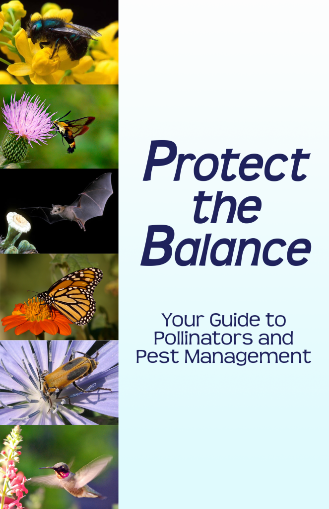 http://greendallas.net/wp-content/uploads/2016/04/Protect-the-Balance-Cover-663x1024.png