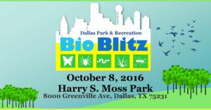 Fall 2016 Park & Recreation BioBlitz @  Harry S. Moss Park   Dallas   Texas   United States