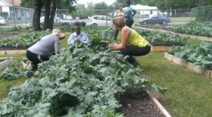 Seeding Dallas Forum: Good Food for the City @ Cliff Temple Baptist Church | Dallas | Texas | United States