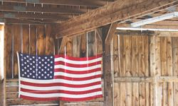 flag, barn, USA