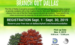 branch out dallas, free tree, native trees, Dallas
