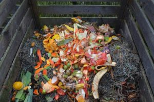 blog photo of compost pile